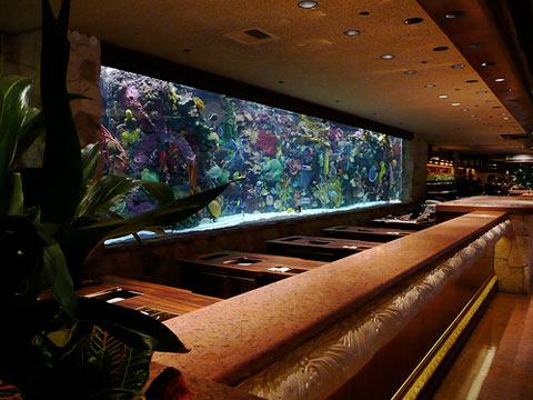 Одним из самых популярных аттракционов развлекательного гостиничного комплекса «Mirage», что в Лас-Вегасе, оказался громадный морской аквариум, расположенный в холле за передним столом.