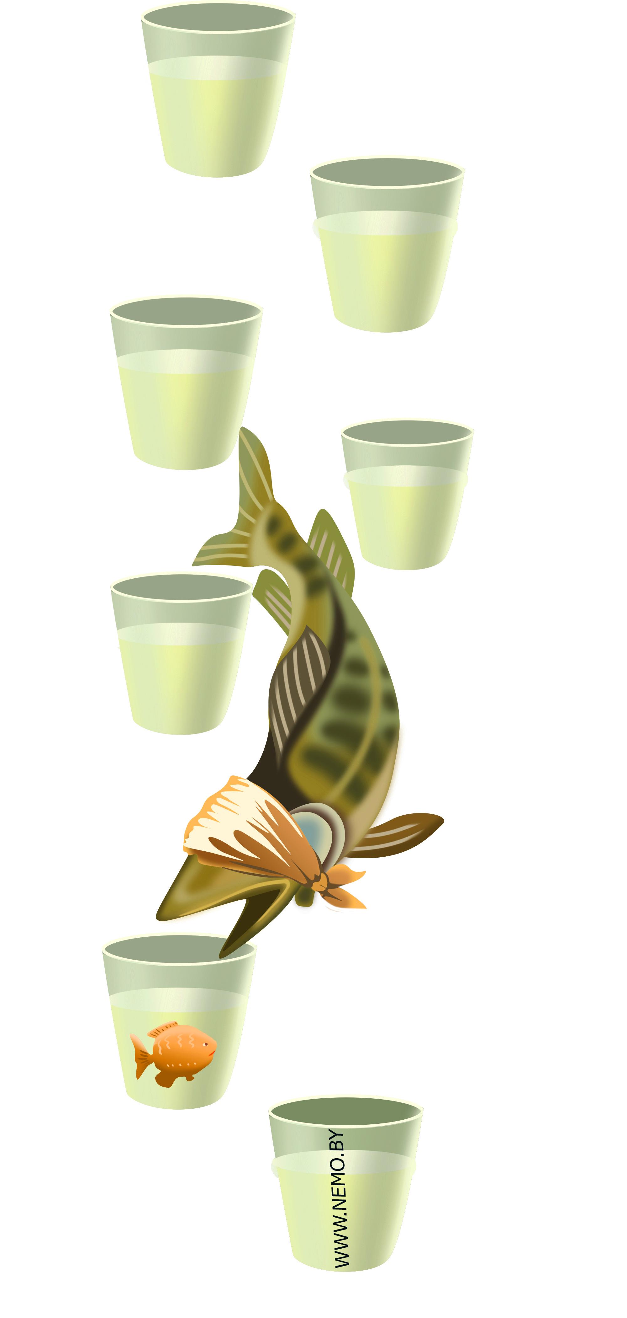 Запахи и обоняние рыб