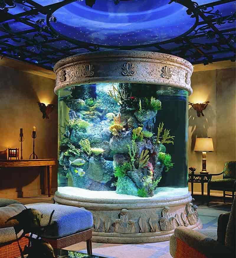 аквариум за 600тыс.$
