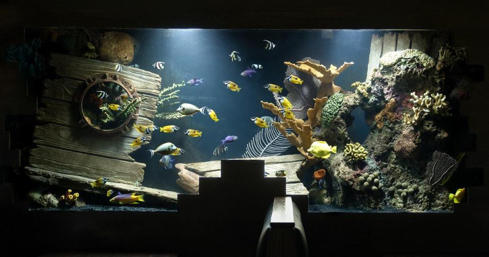 zakaz-aquarium-decor