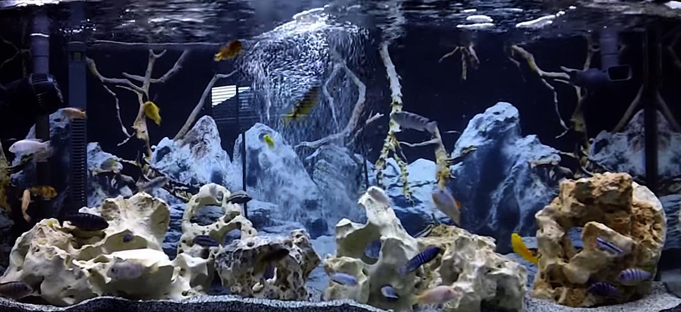 Выбираем камни для аквариума