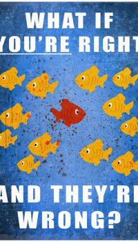 Заблуждения аквариумиста