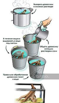 Прежде чем установить корягу в аквариум