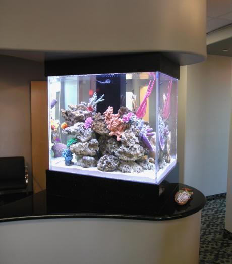 Мини морской аквариум