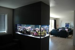Доступ к аквариуму