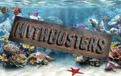 Мифы о морском аквариуме