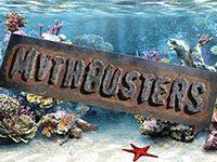 Рифовый аквариум мифы