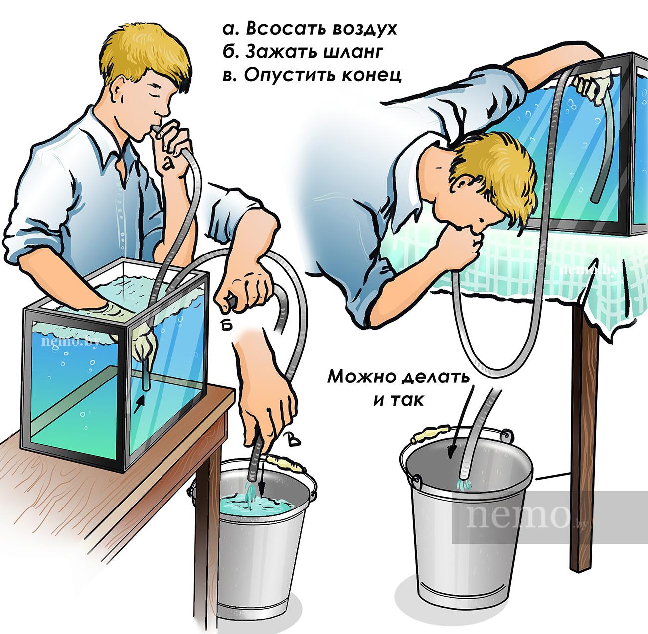 Как поменять воду в аквариуме?