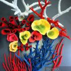 Большой выбор кораллов для аквариума