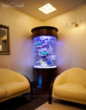 akvariym-pod-zakaz