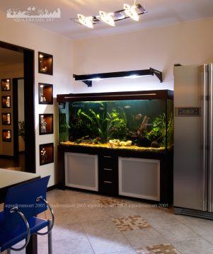 aquarium-s-rasteniami