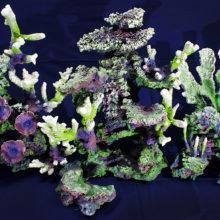 Риф на синем фоне