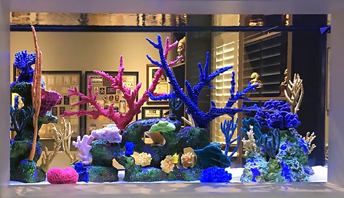 Фото аквариума с красным и синим стагхорнами