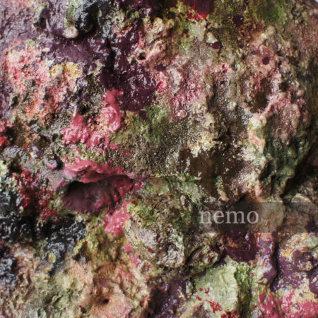 Выбор цвета декораций для аквариума