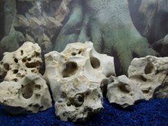 Кенийский камень известняк