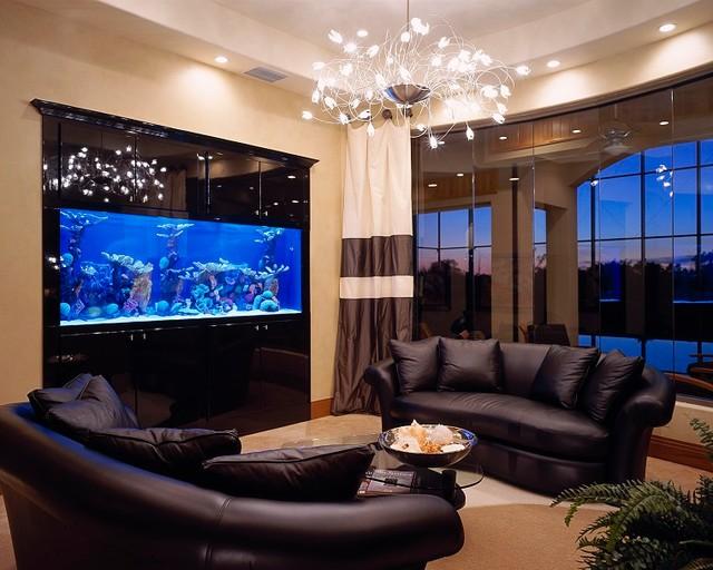 Встроенный в стену морской аквариум