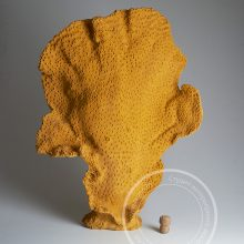Искусственные кораллы для больших аквариумов