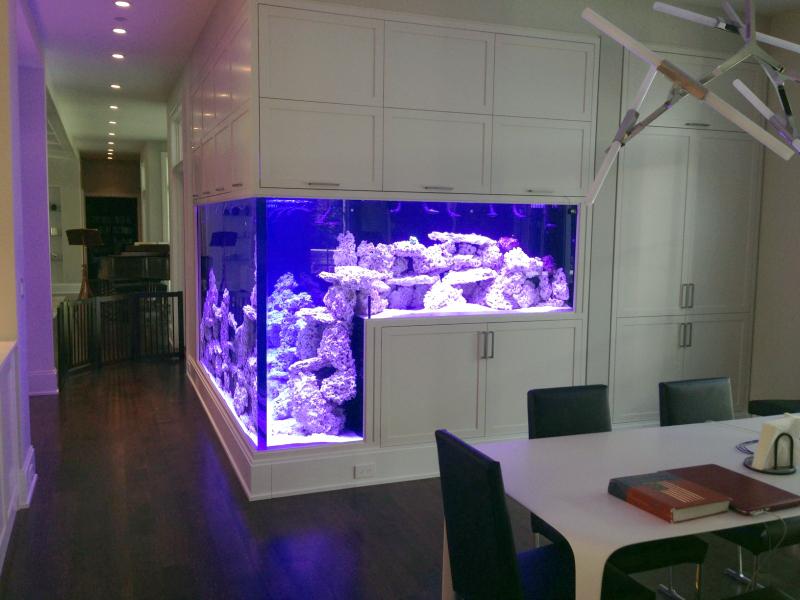 Двойной аквариум встроенный в стену