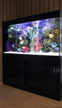Аквариум с искусственным коралловым рифом
