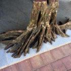Искусственный ствол дерева с высотой 100см
