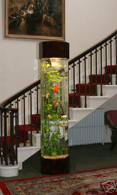 Фото аквариум башня