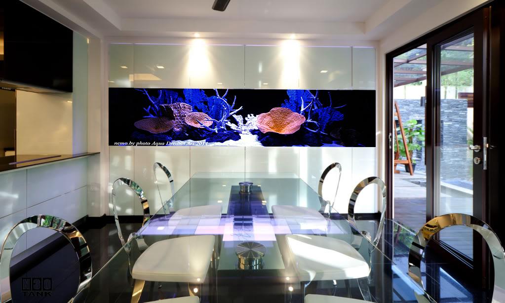 Встроенный аквариум на кухне