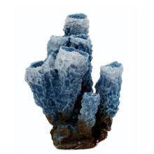 Коралл губка трубчатая