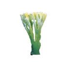 Коралл искусственный зеленый