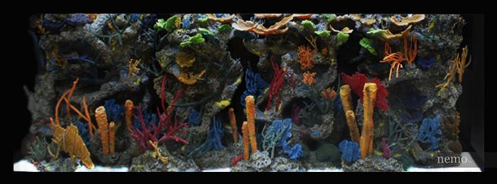 Псевдоморе в аквариуме фото