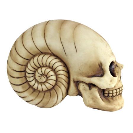 Наутилус - череп декор для аквариума