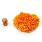 Оранжевый коралл