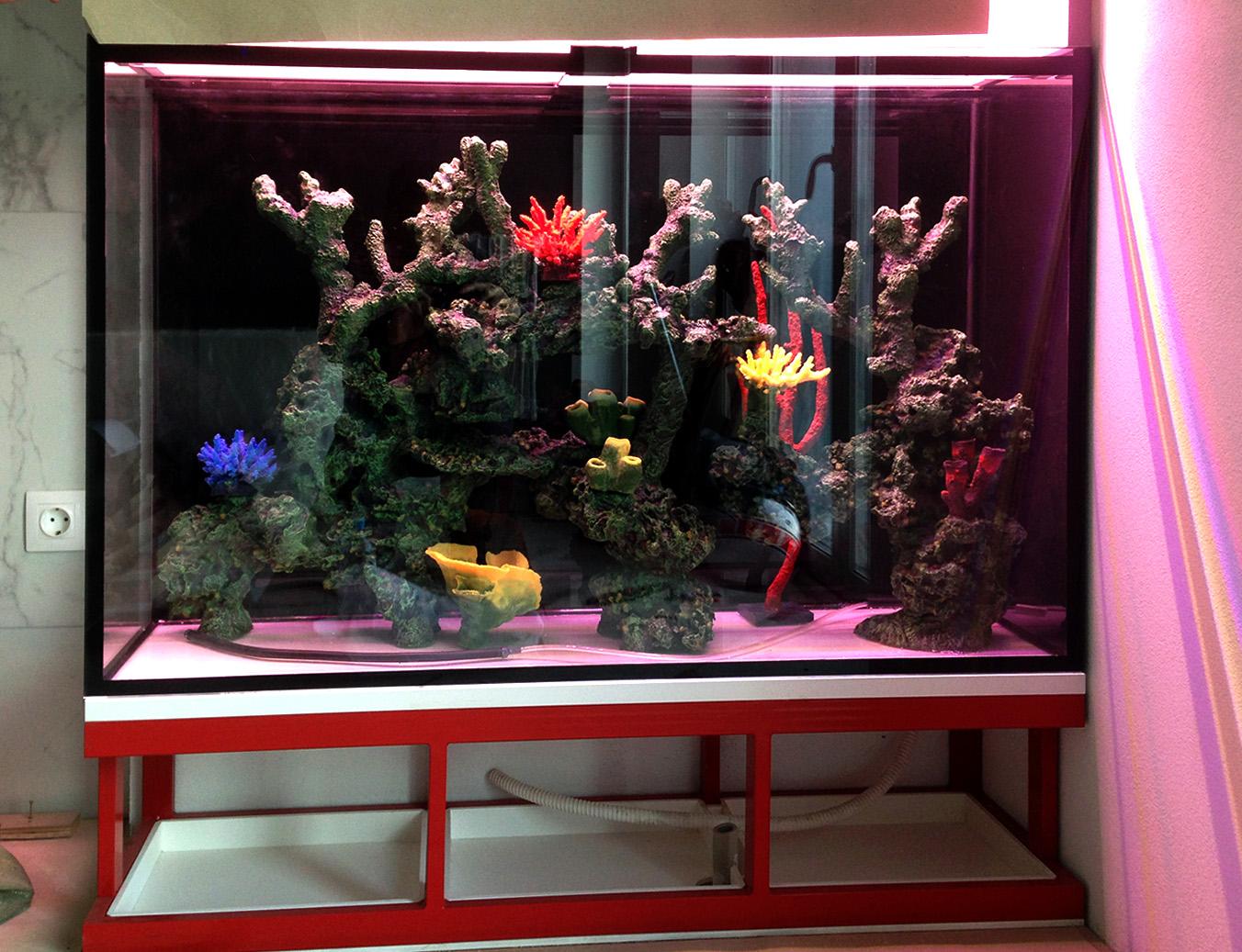 Этот риф в аквариуме