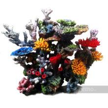 Коралловый риф на заказ