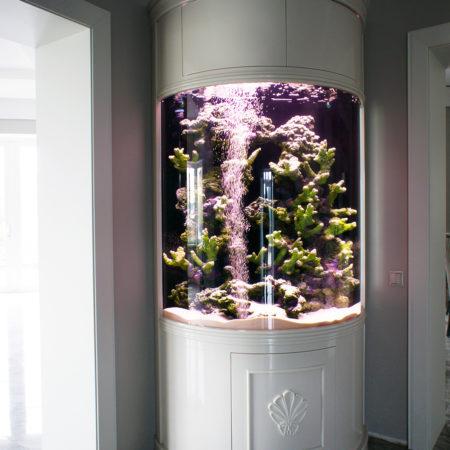 Фото угловой аквариум