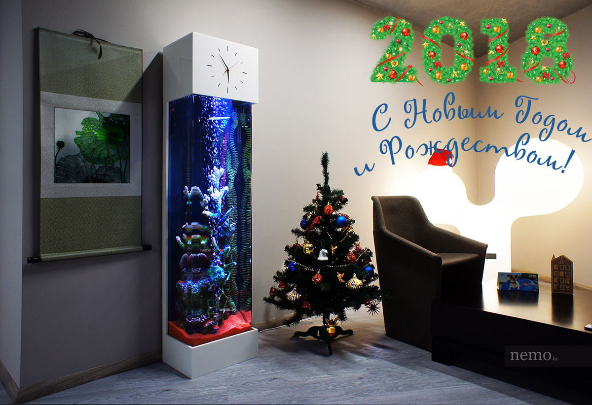 С новым годом и рождеством любители аквариума