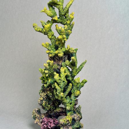 Вертикальный риф