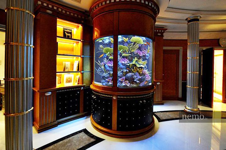 Эпичный аквариум