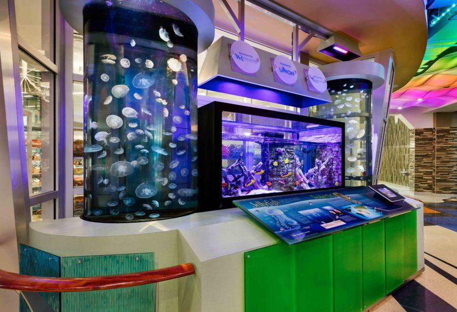 Corian design aquarium