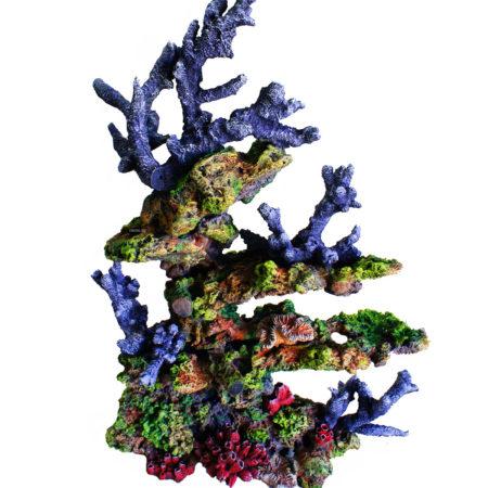 Торцевой риф
