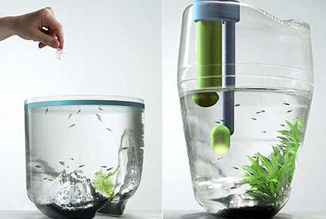 13 необычных аквариумов