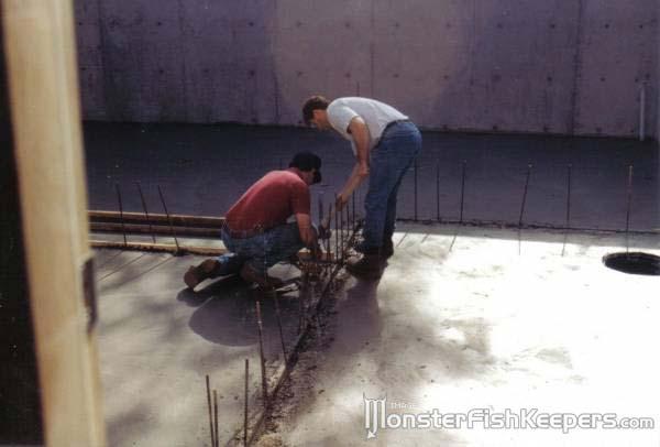История строительства самого большого домашнего аквариума