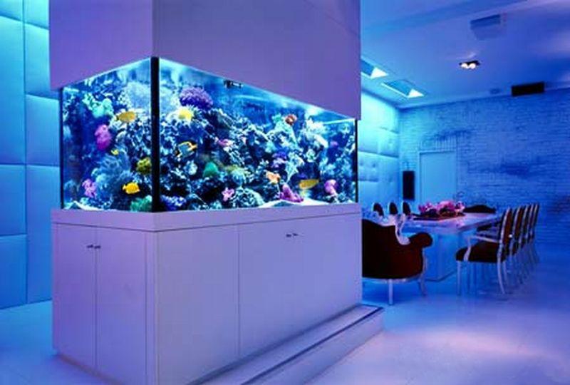 Огромный рифовый аквариум от Okeanos Aquascaping установленный в Нью-Йорке стал воплощением мечты многих  любителей увлеченных подводным миром.