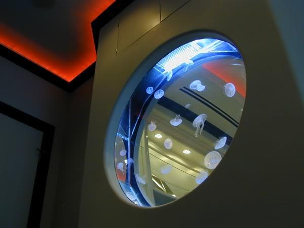 Встроенный в стену аквариум с медузами
