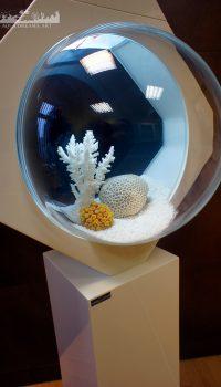 Мастерская AquaDreams, Art представила новую линейку необычных дизайнерских аквариумов сфера. Это оригинальное дизайнерское решение, по сути, представляет собой целостную биотехнологическую систему