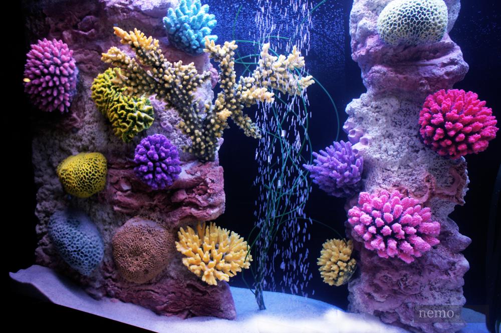 Кораллы в аквариуме Aqua Dreams Art