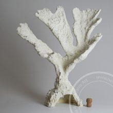 Коралл искусственный Elk horn