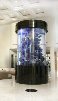 Самые дорогие аквариумы частного интерьера