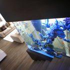 Иногда использование аквариумов в качестве прозрачных стен, разделяющих части помещения являются самым удачным архитектурным решением.
