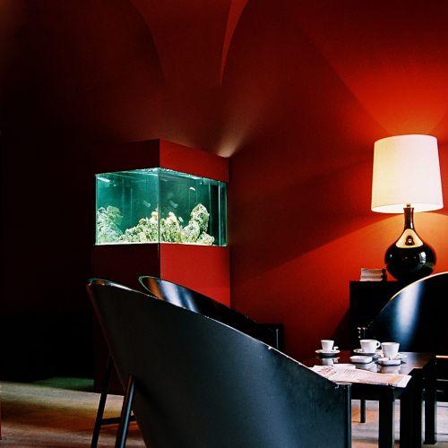 Давайте рассмотрим возможные варианты отделки аквариума, а заодно и их сильные и слабые стороны.
