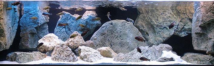 модульное оформление аквариума
